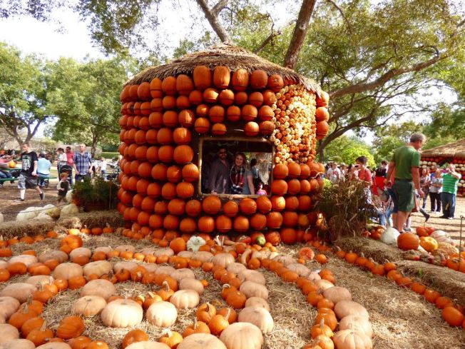 pumpkin-house